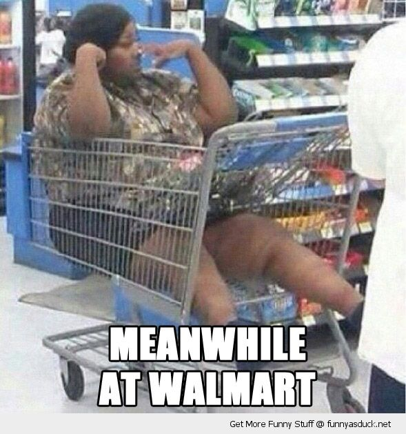 funny-fat-woman-cart-trolley-shopping-meanwhile-walmart-pics