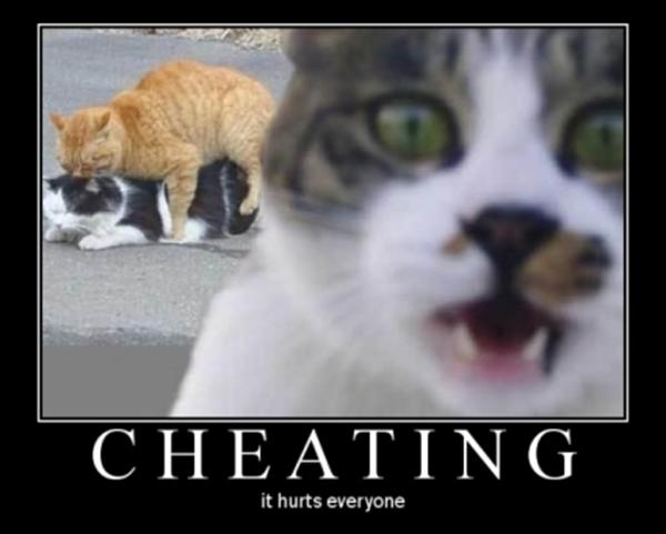 cheating_cats
